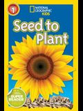 Seed to Plant