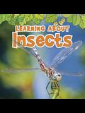 Learning About Insects (The Natural World)