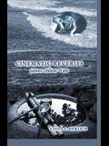 Cinematic Reveries; Gestures, Stillness, Water