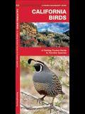 California Birds: A Folding Pocket Guide to Familiar Species