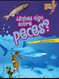 ¿sabes Algo Sobre Peces? (Do You Know about Fish?)