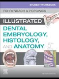 Student Workbook for Illustrated Dental Embryology, Histology and Anatomy