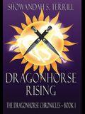 Dragonhorse Rising