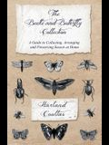 The Beetle and Butterfly Collection - A Guide to Collecting, Arranging and Preserving Insects at Home