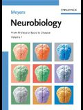 Neurobiology: From Molecular Basis to Disease