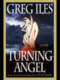 Turning Angel: A Novel