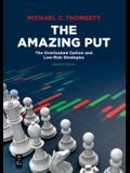 The Amazing Put: The Overlooked Option and Low-Risk Strategies