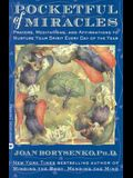 Pocketful of Miracles: Prayer, Meditations, and Affirmations to Nurture Your Spirit Every Day of the Year