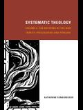Systematic Theology, Volume 2: The Doctrine of the Holy Trinity: Processions and Persons