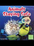 Animals Staying Safe