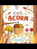 Nature Stories: Little Acorn: Padded Board Book