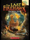 The Secret Maze: A Branches Book (the Last Firehawk #10), 10