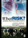 What Risk?: Paperback Edition