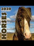Horses 2020 Mini Wall Calendar