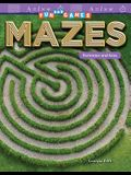 Fun and Games: Mazes: Perimeter and Area