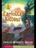 Carlotta's Kittens: A Club of Mysteries Book