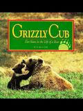 Grizzly Cub: Five Years in the Life of a Bear