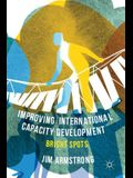 Improving International Capacity Development: Bright Spots