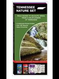 Tennessee Nature Set: Field Guides to Wildlife, Birds, Trees & Wildflowers of Tennessee