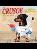 Crusoe the Celebrity Dachshund 2020 Mini Wall Calendar (Dog Breed Calendar)