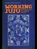 Working Juju: Representations of the Caribbean Fantastic
