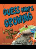 Guess What's Growing: A Photo Riddle Book