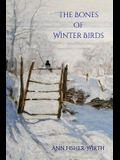 The Bones of Winter Birds