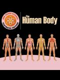 3rd Grade Science: The Human Body - Textbook Edition