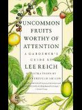 Uncommon Fruits Worthy of Attention: A Gardener's Guide