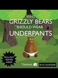 Why Grizzly Bears Should Wear Underpants Calendar