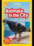 National Geographic Readers: Animals in the City (L2)
