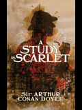 A Study in Scarlet: A Detective Story