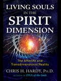 Living Souls in the Spirit Dimension: The Afterlife and Transdimensional Reality