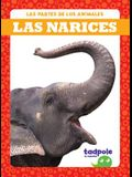 Las Narices (Noses)