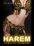 The Harem: An Erotic Adventure