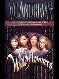 The Wildflowers (Omnibus): Misty--Star--Jade--Cat