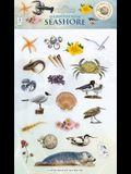 Sticker Play Scene: Seashore