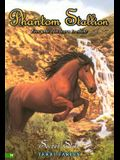 Secret Star (Phantom Stallion #19)