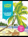 Large Print Calm Color-By-Number