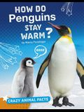 How Do Penguins Stay Warm?