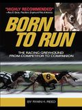 Born to Run: The Racing Greyhound from Competitor to Companion