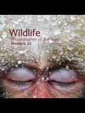 Wildlife Photographer of the Year: Portfolio 22