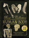 Bone Collection: Human Body [With Cards]
