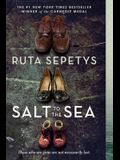 Salt to the Sea