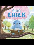 Nature Stories: Little Chick: Padded Board Book
