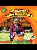 We Harvest Pumpkins in Fall