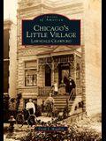 Chicago's Little Village: Lawndale-Crawford