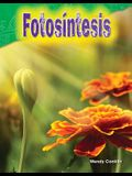 Fotosíntesis (Photosynthesis)