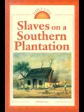 Slaves on a Southern Plantation
