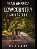 Dead America Lowcountry Collection Part 1 - Books 1 - 6